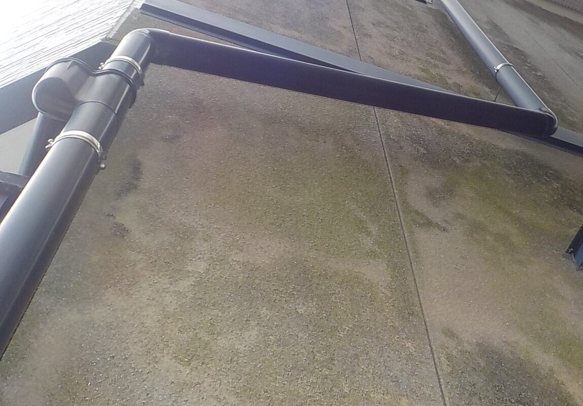 豊橋市 外壁塗装 藻