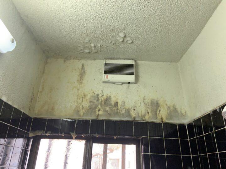 お風呂場壁 清掃