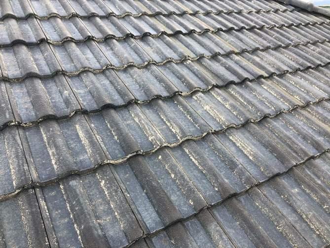 屋根 水洗い完了